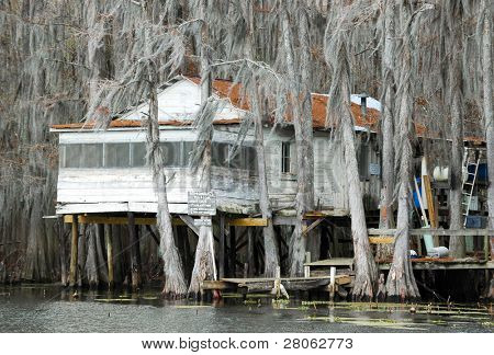 Caddo Lake cypress forest house
