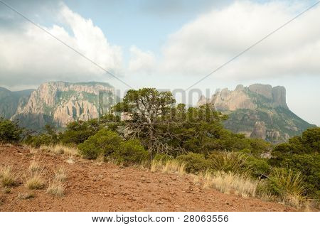 Chisos Mountain cliffs
