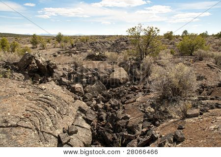 black lava rock field