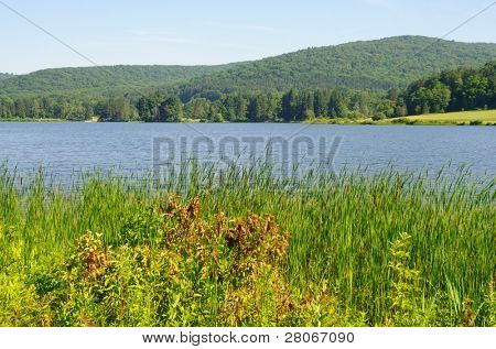 Red House Lake, trees and hills