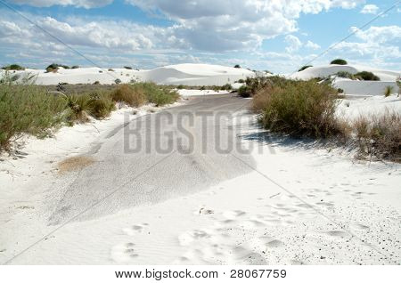 road covered by white sand dunes