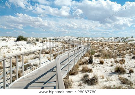 metal boardwalk trail through sand dunes and desert plants