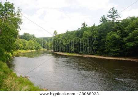 Clarion River in Cook Forest