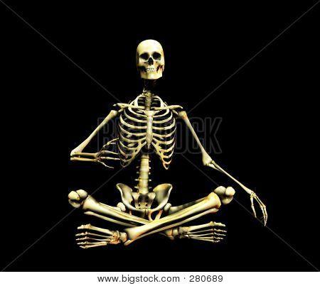 Bone 7