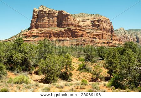 Courthouse butte and green, desert plants