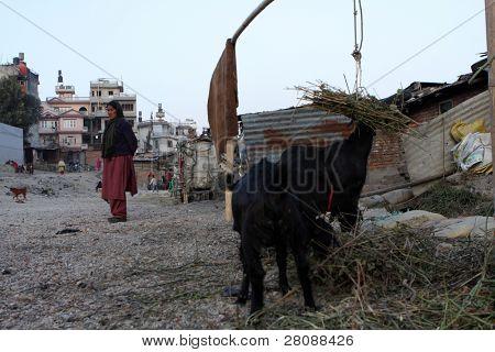 KATHMANDU, NEPAL - JANUARY 7: View of a poor housing area at Old Baneshwor near Bagmati river January 7, 2009 in Kathmandu Nepal.