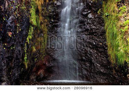 small river waterfall at Madeira Island, Portugal