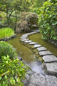 foto of stepping stones  - A footpath from stones laid with brick through a fine pond in Japanese garden - JPG