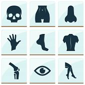 Physique Icons Set With Leg, Palm, Eye And Other Foot Elements. Isolated  Illustration Physique Icon poster