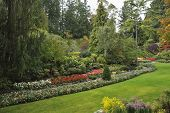 Picturesque  glade in well-known Butchard-garden on island Vancouver in Canada poster