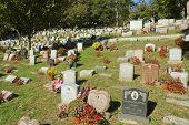 stock photo of crematory  - Hartsdale Pet Cemetery - JPG
