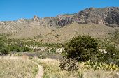 stock photo of stagecoach  - Tejas Canyon cliffs - JPG