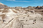picture of paleozoic  - blue mesa painted desert and petrified wood - JPG