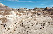 stock photo of paleozoic  - blue mesa painted desert and petrified wood - JPG