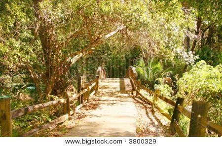 Boardwalk Florida