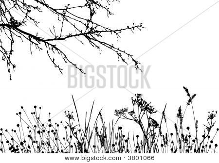 Grass & Tree / Vector Silhouette
