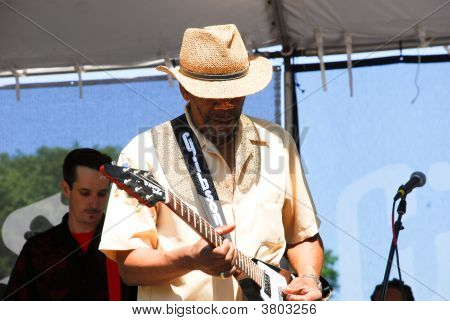 Festival de Blues de Chicago