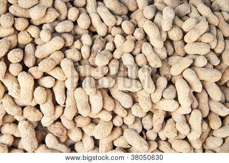 Organic Salted Peanuts In It's Shell