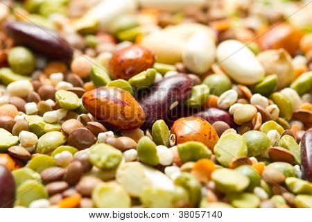 Pea, Bean, Lentil and other legumes