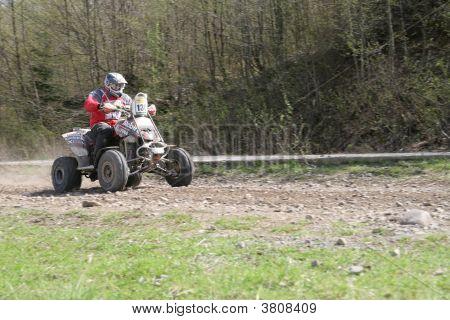 Rally Quad