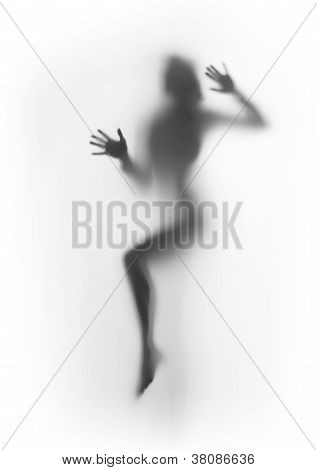 diffuse sexy woman body silhouette, legs, palms,