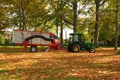 stock photo of fall leaves  - Tractor pulling leaf collector to clean up park grounds - JPG