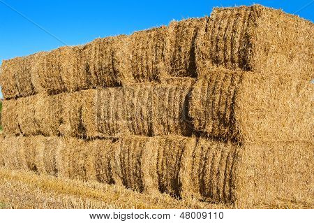 Stack of hay bales in a field