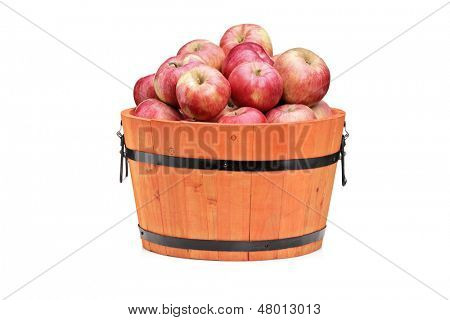 Studio shot of red apples in a wooden barrel isolated on white background
