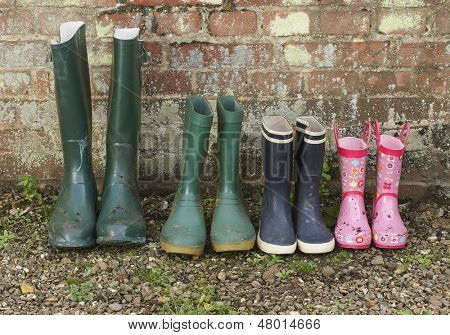 View of a variety of rubber boots in a row