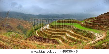 Rice Terraces, Dazhai, Near Longsheng, Guangxi, China. Yao Village Dazhai, Longsheng, Guanxi Provinc