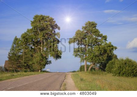 Rural Road  In A Sunny Day