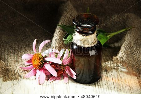 Medicine bottle with purple echinacea flowers on wooden table with burlap