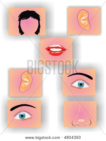 Face Puzzle- Metaphor Of Business Practices