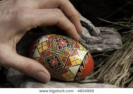 Egg In Hand