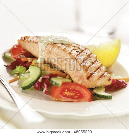Grilled Salmon Steak Served On Letuce Tomato And Cucumber
