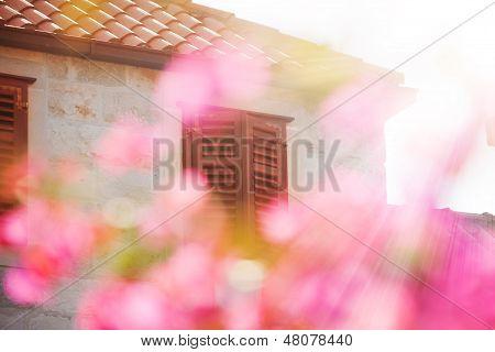 Haus und Frühling Rosa Kirsche Blüten