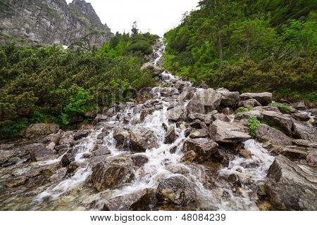 Cascatas de riacho de montanha no Parque Nacional Tatra, Polônia
