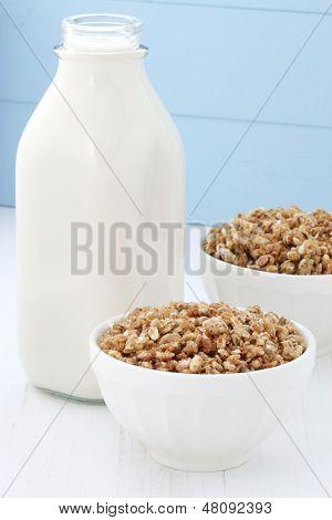 Delicious Healthy Crunchy Cereal