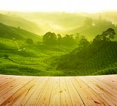 stock photo of morning sunrise  - Wood platform beside tea plantation in  morning view - JPG