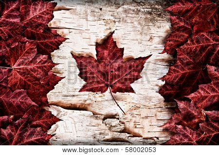 Canadian Background