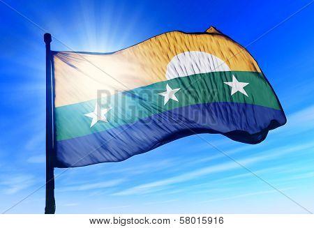 Nueva Esparta (Venezuela) flag waving on the wind