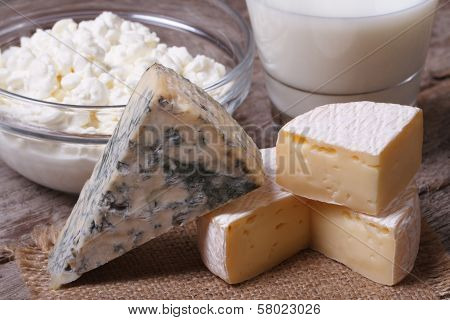Brie Cheese, Dor Blue, Cottage Cheese And Milk Close Up