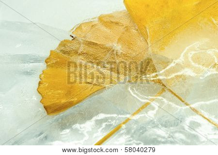 Ginkgo leaves in the ice