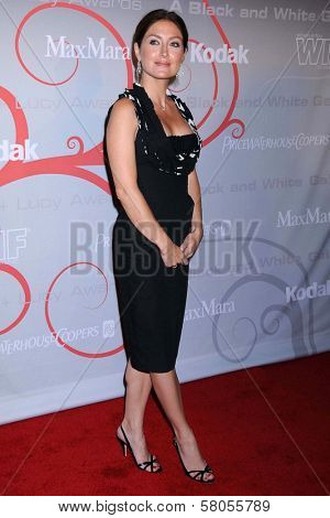 Sasha Alexander  at the 2008 Crystal And Lucy Awards Gala. Beverly Hilton Hotel, Beverly HIlls, CA. 06-17-08
