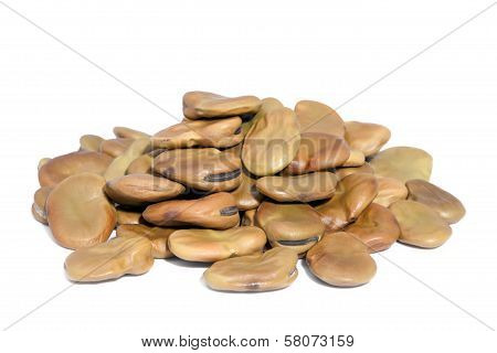 Pile Broad Beans Isolated On White Background.