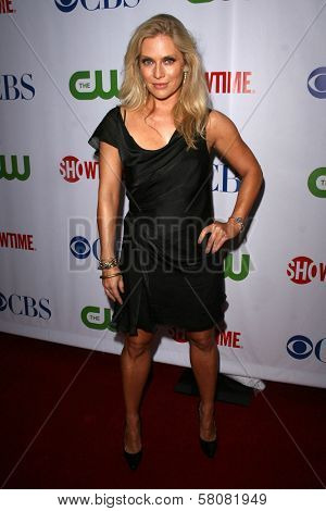 Emily Proctor  at the CBS, CW and Showtime Press Tour Stars Party, Boulevard3, Hollywood, CA. 07-18-08