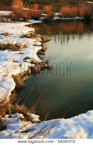 The edge of beaver pond
