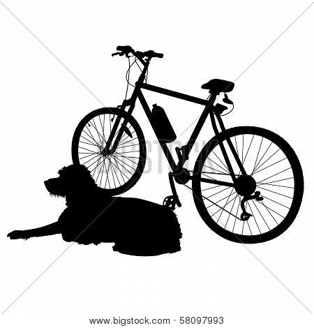 Dog and Bike Silhouette