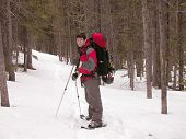 image of beartooth  - snowshoeing up the lake fork in montana - JPG