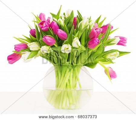Tulips Flowers Bouquet In Vase Over White Background